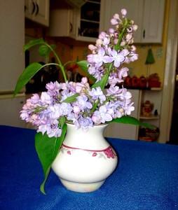 цветы и стихи