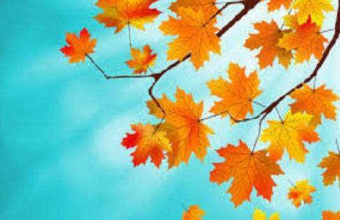Букет кленовых листьев (рассказ)
