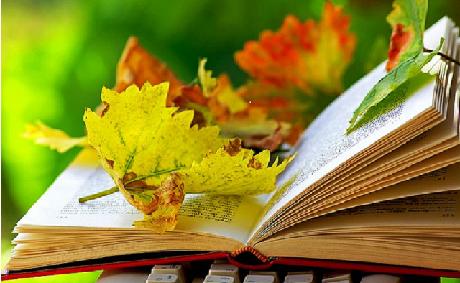 Издаем книгу: как написать аннотацию и блурб